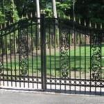 Ornamental Steel Gate with Decorative Scrolls